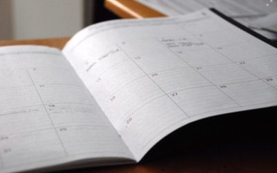 How to Use Dynamic Dates in Your Chris21 Reports